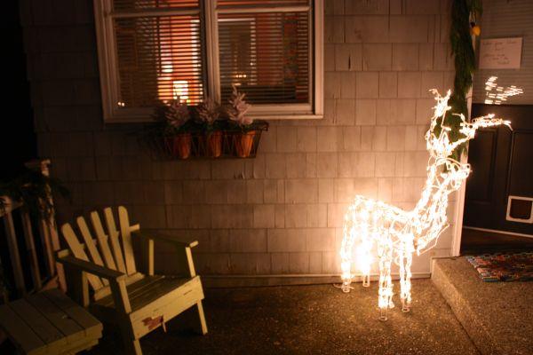 reindeerlights
