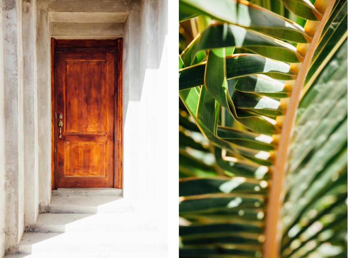 doortree (1)